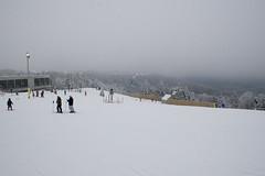 bunny slope (brianficker) Tags: usa snow wv skiresort westvirginia snowshoemountain
