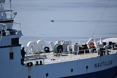 A drone camera takes off from the deck of the Nautilus (Ocean Networks Canada) Tags: nautilus drone wiringtheabyss2016 abyss16