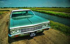 Chevrolet Impala '66 (MostlyCarPhoto's) Tags: auto usa classic cars netherlands dutch nikon classiccar photoshoot muscle edited automotive filter chevy american vs lpg autos impala sixties v8 edit carphotography noordwijkerhout chevroletimpala classicamerican carphotoshoot d5200