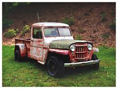 Willys (daveelmore) Tags: truck junk rust 4x4 pickup pickuptruck vehicle willys patina dioramaartfilter lumixleicadgsummilux25mm114