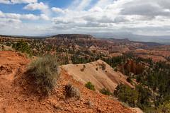 IMG_6069.jpg (scott_bohaty) Tags: season utah nationalpark spring state time location brycecanyon