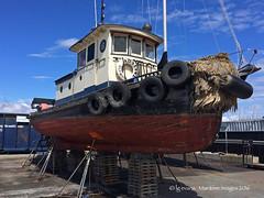 7635_Adaline (lg evans Maritime Images) Tags: tugboat tug lge adaline seattlewa onthehard lgevans maritimeimages ©lgevans seaviewwest