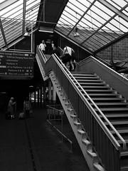 Mynd a dod / Coming and going - Cryw / Crewe (Rhisiart Hincks) Tags: grisiau diri skaliero bis staer staidhir staidhre eskailera escalier stairs stairway eisenbahn ferrocarril ferrovia iarnrd geleinkelis   caleferat gorsaf geltoki tihenthouarn tigar gare estacion station stisean porzhhouarn rheilffordd henthouarn hynshorn trenbide burdinbide chemindefer railway rathadiarainn crewe cryw duagwyn gwennhadu dubhagusgeal dubhagusbn zuribeltz czarnobiae blancinegre blancetnoir blancoynegro blackandwhite  bw feketefehr melnsunbalts juodairbalta negruialb siyahvebeyaz rnoinbelo    zwartenwit mustajavalkoinen crnoibelo ernabl schwarzundweis
