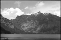 2016-07-02-0086 (Cosmic Ray's) Tags: blackandwhite nature olympus 35mmfilm vintagecamera wyoming tetons nationalparks americanwest jacksonhole grandtetonnationalpark usnationalparks phelpslake jacksonwy omsystem