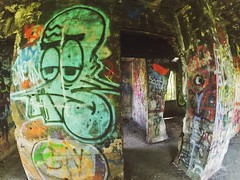 Buck-tooth, 2016.06.17 (Aaron Glenn Campbell) Tags: sunlight square graffiti shadows pennsylvania faded shade squareformat nepa urbex actioncam luzernecounty wyomingvalley hanovertownship iphoneography instagramapp uploaded:by=instagram snapseed wifitransfer iphone6plus xiaomiyi yiactionapp