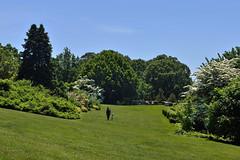 Wave Hill (Eddie C3) Tags: botanicalgardens nycparks wavehill bronxnewyork