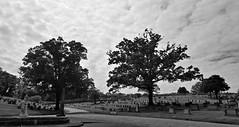 Greenwood Cemetery (Bella Lisa) Tags: atlanta cemetery graveyard greenwoodcemetery graves jewishcemetery historial swats southwestatlanta