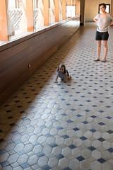 Floor was so dusty (petyr.rahl) Tags: spain aljafera zaragoza aragn es