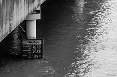 Quand les prix montent (Cafarnaom) Tags: paris seine river juin eau flood monte capitale fleuve crue 2016 floodings nikond7000 cafarnaom