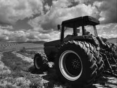 Treads on a tractor and striped fields (MyLifesATrip) Tags: blackandwhite bw washington pullman palouse