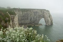 Manneporte (michael_hamburg69) Tags: cliff france frankreich cliffs normandie normandy tretat steilkste feuerstein klippen kreide seinemaritime alabasterkste falaisedmanneporte