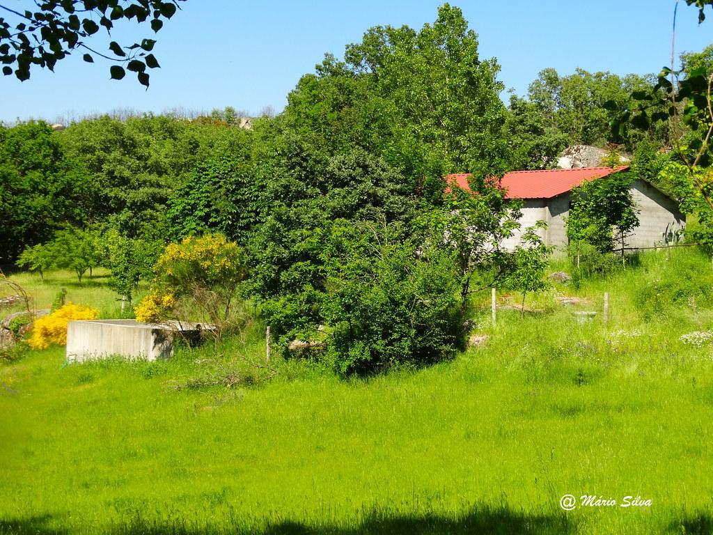 Águas Frias (Chaves) - ... o prado .. o tanque ... a casa ...
