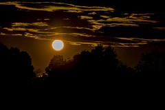 Sunset with clouds - **Explored** (runningman1958) Tags: 365 365dayproject nikon d7200 nikond7200 nature sunset ottawariver