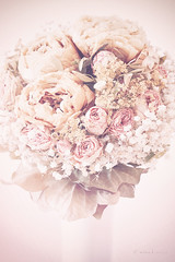 Bridal bouquet (mimo b. rokket) Tags: bridalbouquet brautstraus hochzeitsstraus bouquet blumenstraus flowers blumen vase vintage romantik romantic romance pfingstrosen peony canonefs60mmf28macrousm rosen roses