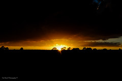 DSC_0178 (timmie_winch) Tags: nikon nikond3000 d3000 august august2016 2016 sun sunset sunsetsuffolk sunsetoversuffolkcountryside sunsetovercornfields sunsetovercornfield silhouette 18105mm 18105vr nikon18105mmvrlens shadows golden goldenhour goldenlight elliedunn ellie eleanordunn ells eleanor ellsdunn dunn landscape landscapephotography landscapephotographer naturephotographer naturephotography nature timwinchphotography tim timwinch winch debenham ip14 suffolk
