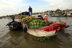 JMF275256 - Delta del Mekong (Vietnam) (JMFontecha) Tags: jmfontecha jesúsmaríafontecha jesúsfontecha sudesteasiático vietnam viaje viajes tradición mercado