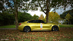 BMW M4 Coupe Austin Yellow (Gabrielgbg) Tags: black gold intense top m more exotic m3 m6 m5 exclusive supercar m4 motorsport supercars exclusivo