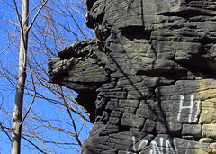 interesting erosion (Hank Rogers) Tags: sky cliff mountain tree nature water face lines rock stone iceage forest giant pareidolia flow waterfall rocks natural flood pennsylvania unique profile erosion formation pa land weathered layers blocks geology evidence harding biblical stacks ransom weathering fallingsprings geological landform greatflood geologic fractures watergap lithic wyomingvalley coxton campbellsledge