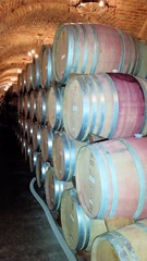 #CDAHavana, Hot Havana Night, Castello di Amorosa Winery, Napa Valley, California, USA (jimg944) Tags: castle winery vineyards grapes napavalley napa castello amorosa castellodiamorosa castleamorosa cdahavana