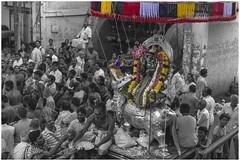 shower of flowers (Ramana Kumar B) Tags: india festival temple selective 2015 panguni