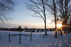 Snowy February Evening (marylea) Tags: winter sunset snow field rural landscape icy feb28 2015