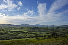 Landscape in Val d'Orcia. [EXPLORE]