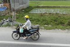 Sur la route de Hu   31658_TT (photostudio63 photographe clermont ferrand) Tags: travel horizontal vietnam cycle asie circuit vlo voyages vitnam 2015 mobylette surlaroute 2roues asiedusudest moyendetransport pninsuleindochinoise photostudio63 rpubliquesocialisteduvitnam photographeclermont63fr photostudio63fr photographeclermont63com photostudiocom thierrytavars