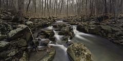 Rock Brook April 2015 2 (William_Doyle) Tags: trees nature water photoshop river woods rocks stream nj somerset april skillman 2015 rockbrook topazadjust