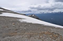 CANADA - PARQUE NACIONAL DE JASPER - MONTE WHISTLER (25) (Armando Caldern) Tags: whistler patrimoniocultural montaasrocosas parquenacionaldejasper parquenacionaldecanada