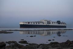 ATLANTIC SAIL (angelo vlassenrood) Tags: netherlands canon boot photo shoot ship shot picture nederland vessel cargo container angelo photoshot roro schip westerschelde walsoorden eos5dii atlanticsail
