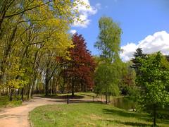 Op een zonnige dag in Mei (~~Nelly~~) Tags: spring lente printemps borgerstein