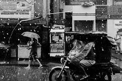 145/365 (Nico Francisco) Tags: street blackandwhite rain weather umbrella tricycle pasig