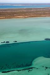 Shark Bay WA -DSC3164
