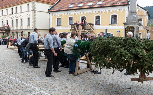Tradition Maibaumstellen in Lam 02 (160501 - Böhmerwald / Bayerischer Wald - Germany)