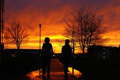 North campus with winter sun (maynoothuni_international) Tags: ireland campus maynooth kildare