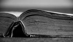 (Lirba C) Tags: old bw book pages libro antiguo pginas