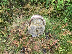 Ordnance Survey / GPO benchmark, St Boniface Down (looper23) Tags: june st down marker wd survey isle wight gpo benchmark boniface ordnance 2016