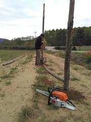 """Preparant el pati per estocar fusta i biomassa <a style=""""margin-left:10px; font-size:0.8em;"""" href=""""http://www.flickr.com/photos/134196373@N08/27313657546/"""" target=""""_blank"""">@flickr</a>"""