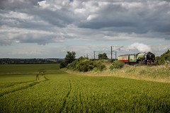 60163 Tornado - Retford (deltic17) Tags: york cloud colour train canon photography countryside raw country loco steam fields 5d locomotive a1 tornado nrm eastcoast peppercorn steamlocomotive eastcoastmainline mk3 lner askham ecml 60163 brotherwood canon5dmk3 peppercornclass 5dmk3 thea1steamlocomotivetrust 5z60 5dmk111