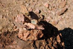 5R6K2832 (ATeshima) Tags: arizona nature havasu