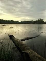 Morning Rain (Wayne Greer) Tags: rain kansas mobilephotography iphoneography waynegreer iphone6s