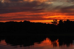 Raging fire (A. Stavrovich) Tags: trees sunset summer sun nature water sunshine silhouette june clouds forest reflections river fire russia sunrays novgorod canon5dmarkii canonef70300mmf4056is