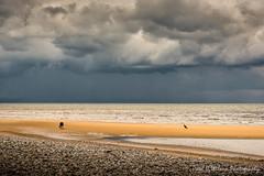 Kinmel Bay. June 2016-20 (revpdwilson) Tags: kinmelbay nikon28300mmvr nikond750 northwales seaside coast naturallight