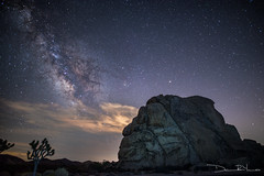 Intersection of Earth and Space (DamonRYoung) Tags: california nature stars landscape star joshuatree soe milkyway