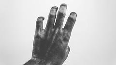 untitled (Mateus Art) Tags: nikon black pele preta em mundo branco