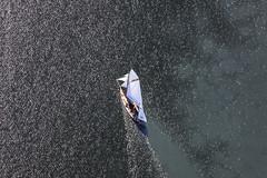 Sailing School (Aerial Photography) Tags: lake water by landscape see wasser ship outdoor aerial landschaft ammersee schiff barge deu segelschiff segeln segelboot luftbild luftaufnahme obb bayernbavaria deutschlandgermany binnenschiff motorschiff fotoklausleidorfwwwleidorfde 29062011 ammerseelkrlandsbergamlech 1ds68208
