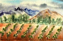 The BAROSSA VALLEY Vineyards - Watercolour (elliott.lani) Tags: mountains art painting sketch vines hills vineyards valley watercolour southaustralia barossa barossavalley mountainranges