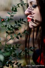 Anteprima Set 2015 (itzel1984) Tags: set model nikon ombra piante bacche rosso bosco d800 foresta elfo rieti fotografico profilo