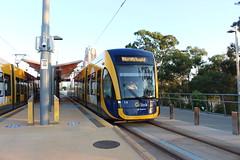 G:link 15/03/15 (Darcy Reynolds) Tags: tram lightrail bombardier goldcoast lrv lightrailvehicle glink gclr flexity2 goldcoastlightrail goldcoasttram gclightrail flexityii