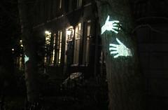 Tree huggers (szellerer) Tags: tree netherlands amsterdam hug lightfestival illuminade